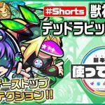 【新キャラ】デッドラビッツInc.【J】獣神化・改!超レーザーストップとプロテクションにより守備面◎!最初にふれた敵に貫通弾を放つ希少なSSを所持!【新キャラ使ってみた #Shorts|モンスト公式】