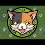 【新EXクエスト】猫ちゃん⁉︎⁉︎⁉︎⁉︎⁉︎⁉︎⁉︎⁉︎【モンスト】